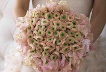 Beautiful Flowers / by Sherry Hogan