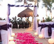 Arches & Gazebos / Choose from a variety of arches and gazebos for your special day or create your own!