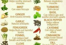 Herbal medicine °•