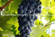 Rote Rebsorten / red grape varieties
