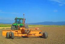Fields of Venere Rice... / Campagna