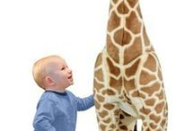 Baby & Toddler Toys / by babiesnmom shop