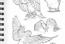 dessin d'oiseaux
