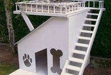 köpek evleri