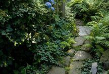 Beautiful Path Ways