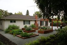 Santa Clara County Landscaping / Residential Installs and Sustainable designs in Santa Clara County. Maintained and installed by Bayscape Landscape!
