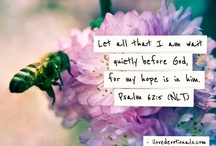 Verse#2014 / Personal Bible Verse for 2014 / by C Chesley