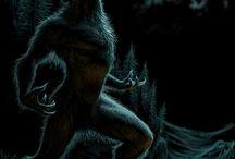 Aluca (the Werewolf)