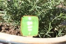 Gardening Tags
