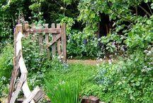 Jardin : massifs+aménagements