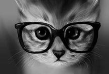 Kitties! / by Katie Zarosinski