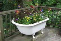 Bathtubs in garden
