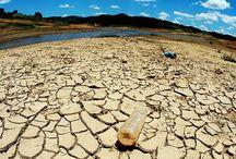 2016 Dia Mundial del Agua:Agua y Empleo