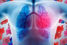HEALTH & MEDICAL / Genetics, DNA, Anatomy & Physiology