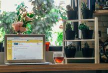 PLANTAS NA DECORAÇÃO / Plantas na decoração, casa com plantas, apartamento com plantas, decoração com plantas