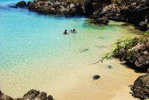 Our Future Home- Aloha / by Meghan Degele