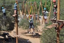 Aerial Adventure Course / Fun on the Aerial Adventure Course at Yosemite Ziplines and Adventure Ranch!