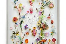 Plants Art