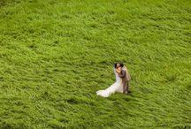 Мои фотографии / Моё свадебное портфолио. Фотограф Рудаков Александр wedding photo from Russia photographer Rudakov Alexander