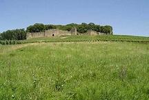 Château Fort - Franche Comté