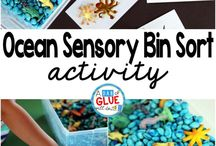 Why I Need a Sensory Bin / Convincing myself I need a sensory bin in my classroom!