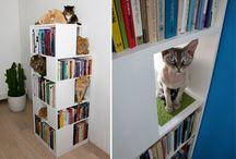 Urban Cat Design/ Leben mit Katze