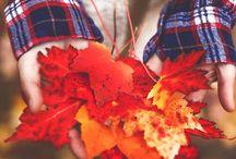 autumnal / by Ronja Oksanen