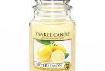 Scents that delight the senses / by Ginger Jamerson