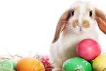 Tradiții de Paște | România / Mâncăruri tradiționale | Preparate delicioase servite la Conacul Bratescu | Ouă încondeiate, pască, cozonac, Învierea | Evenimente speciale | Mese festive | Meniuri traditionale | Sărbători Pascale la Conacul Bratescu | Bran | Romania