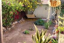Backyard Farming