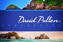 David Pullen Properties / Puerto Vallarta Properties