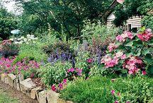 Garden! / by Allison Bell