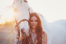 Hestebilder / Bilder av hester og lignende