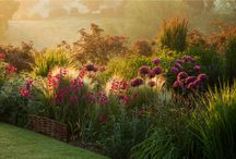 ogrody jakie chciałabym mieć