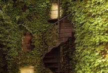 Staircases / by Lynae Katterjohn