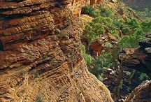 The amazing outback