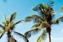 Zonvakantie September / Wil je deze maand nog even naar de zon toe en weg van dit koude en regenachtige weer? Boek nu snel nog last minute naar een zonovergoten bestemming naar keuze bij www.jouwvakantiedeals.nl.