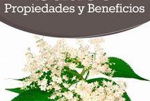 Especias, Plantas y Remedios