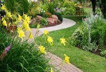Giardinaggio al naturale
