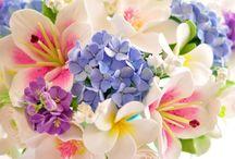Blommor / Inspiration