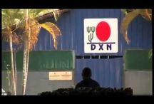 azienda DXN