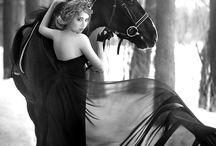 Horse fashionshoot