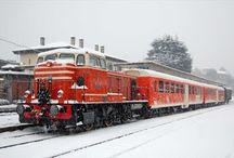 """Il treno dei Sapori presenta """"Il gusto di Natale"""" 9-10-16-17 dicembre Iseo (BS)"""