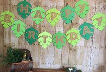 FESTIVE - {theme birthday}