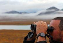 Enjoying Alaskan Wilderness / Wristwatches in the wild