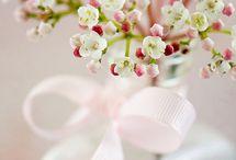 pink flowers / by Karen Roerdink