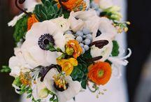 Floral Fancies
