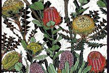 Linocut Botanical illustration