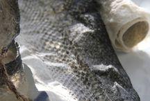 Fish skin craft