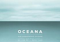 Ocean Project / by LPogue